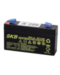LEAD BATTERY CHARGERS SKB SK6 - 1,3