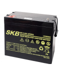 LEAD BATTERY CHARGERS SKB SK12 - 80S (6FM80S)
