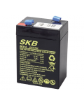 LEAD BATTERY CHARGERS SKB SK6 - 5,0