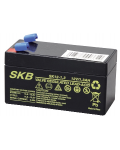 LEAD BATTERY CHARGERS SKB SK12 - 1,3