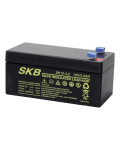 LEAD BATTERY CHARGERS SKB SK12 - 3.2