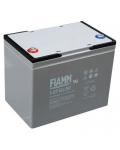 LEAD BATTERY CHARGERS FIAMM 12FGL80 12v 80 amp