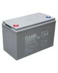 LEAD BATTERY CHARGERS FIAMM 12FGL100 12v 100 amp